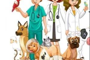 اليوم العالمي للأطباء البيطريين